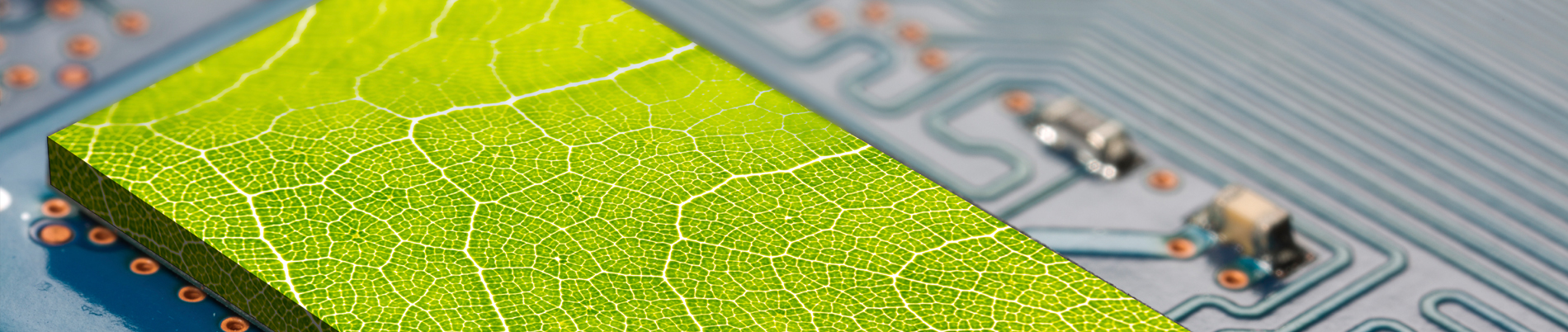 Green leaf embedded in circuit board